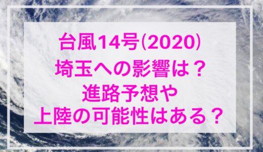 台風14号【2020年】埼玉への影響は?進路予想や上陸の可能性はある?