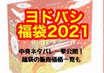 ヨドバシ福袋2021歴代中身ネタバレ一挙公開!!福袋の販売価格一覧も
