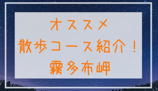 オススメ散歩コース紹介!~霧多布岬で朝日に夕日,満天の星空を満喫~