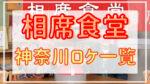 相席食堂|神奈川のロケはエピソード何話?動画配信やAmazonプライム情報も
